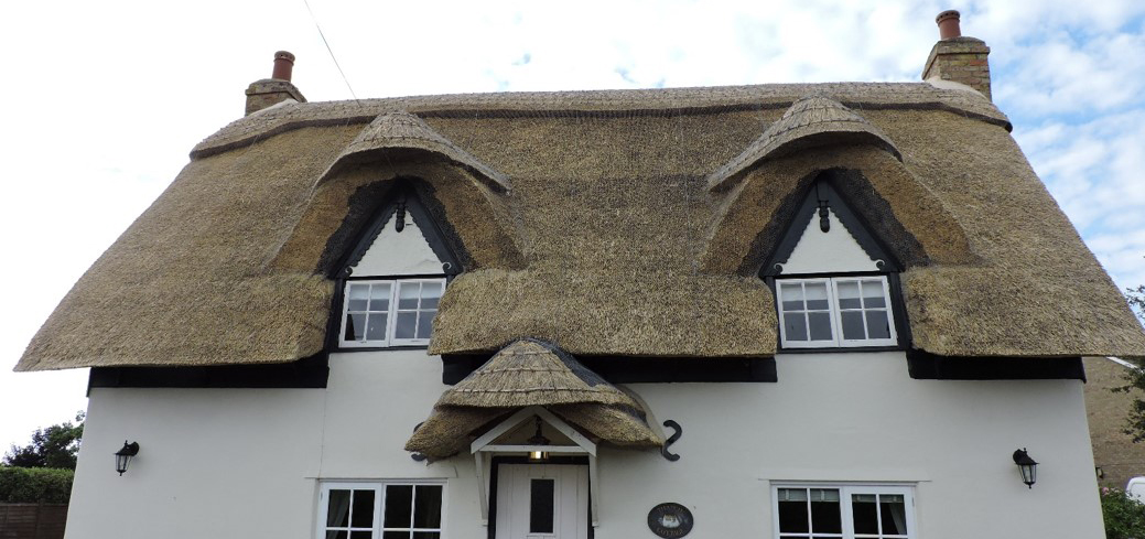 Picture shows thatched roof by Chris Dodson