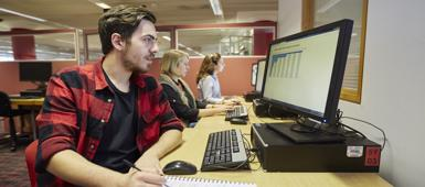 International trade and maritime law student working at a computer
